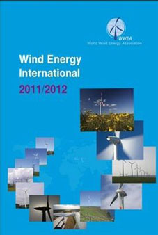 Wind Energy International